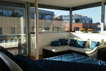CASTLE VIEW PENTHOUSE APPARTMENT - Ljubljana - Apartment