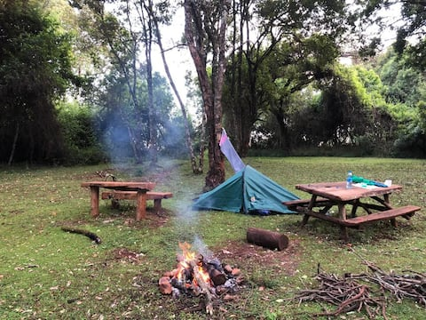 Amaranth Camp site, At Manor House