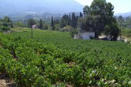 Samos Sweet Vineyard Farm House  - Samos
