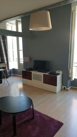 Appartement Hyper centre Nantes : Bouffay - Nantes - Apartament