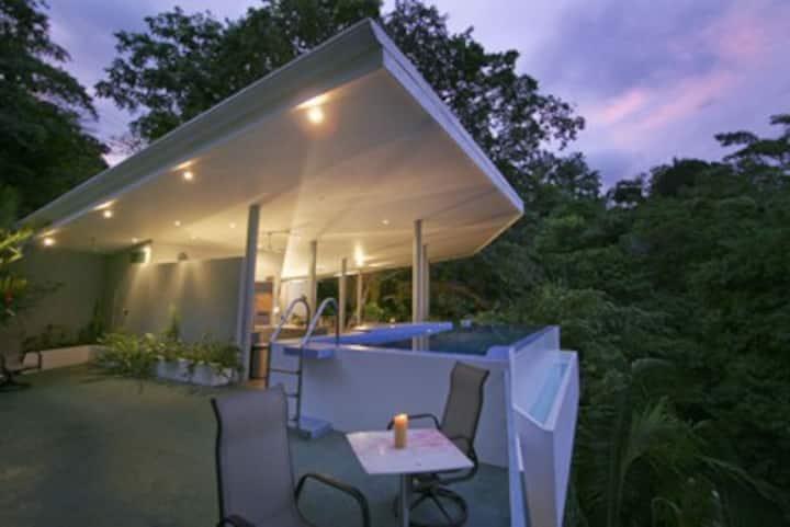 Casa Elsa - a Large Jungle Villa