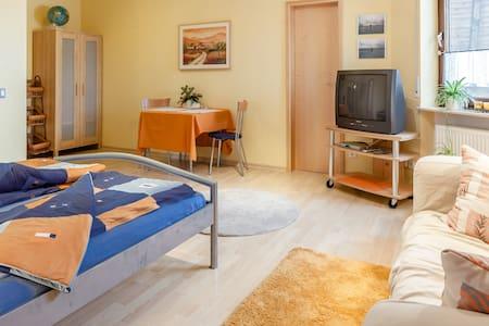 1-bedroom/1-bath apartment, kitchen - Wiesbaden - Talo