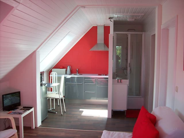 Lux. studio to Ostend by Bruges free bike rental - Oostende - Apartamento