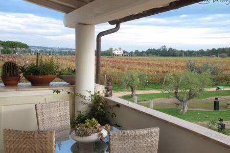 Villa with private pool, near beach - Tarquinia