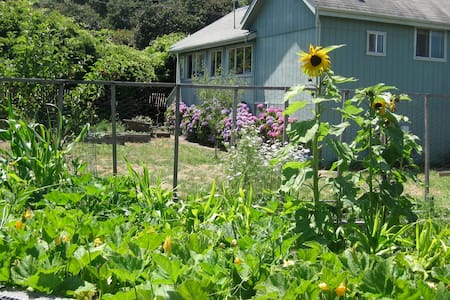 Dog Friendly in Point Reyes  - Point Reyes Station