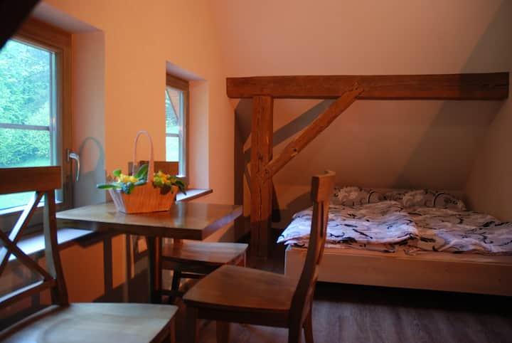 Room for four in Idrija, Romanova