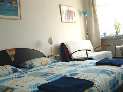 Opletalova Comfortable Apartment