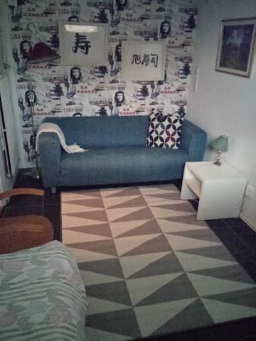 A. Quiet single room in villa basement - Linköping - Casa