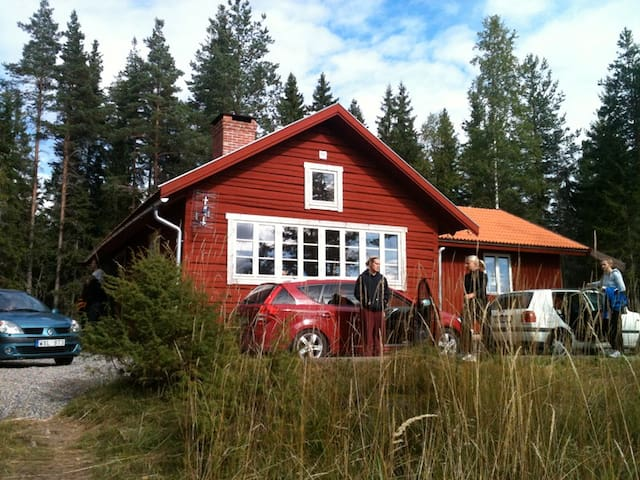 A group staying at the cabin during summer.