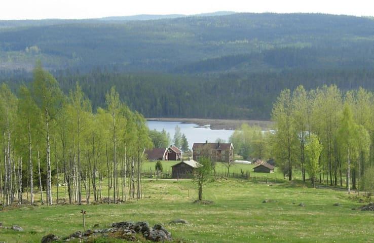 Rikkenstorp - swedish countryside! - Ljusnarsberg Municipality - Haus