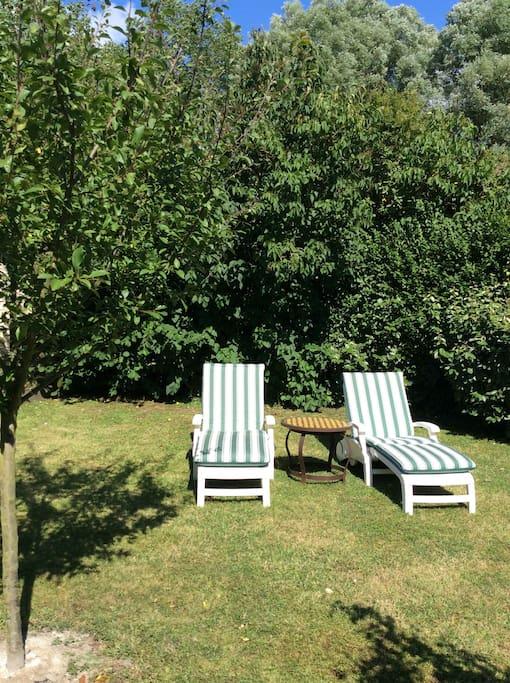 Chaises longues jardin