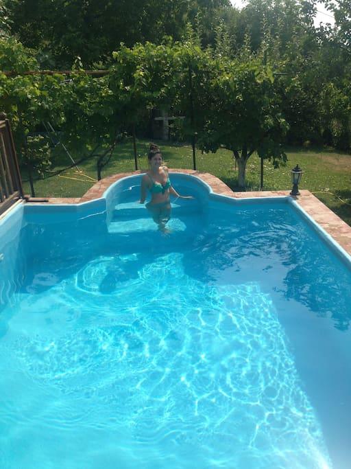 Pool/yard.