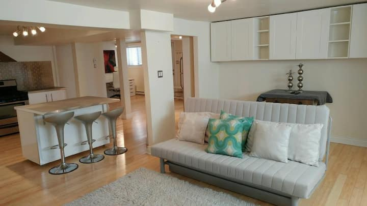 Outremont renovated apartment