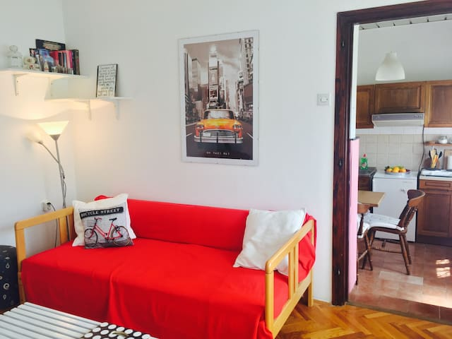 Sweet one-bedroom apartment - Rijeka - 아파트