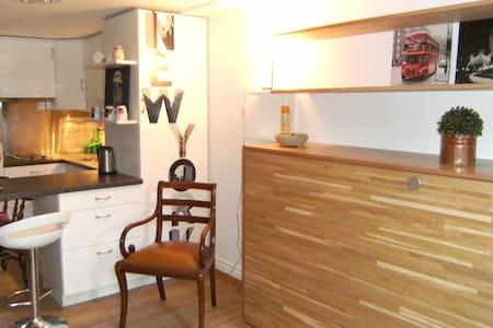 Adorable petit studio, entièrement rénové, style chalet. - 韋爾蘇瓦(Versoix)