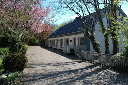 Cheap single room near Blåvand - Billum - Bed & Breakfast
