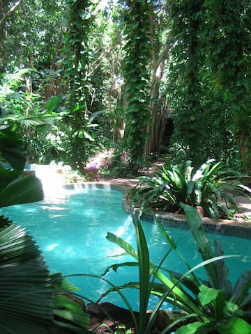 RAINFOREST HIDEAWAY RIGHT IN DARWIN.  Min 3 NIGHT.