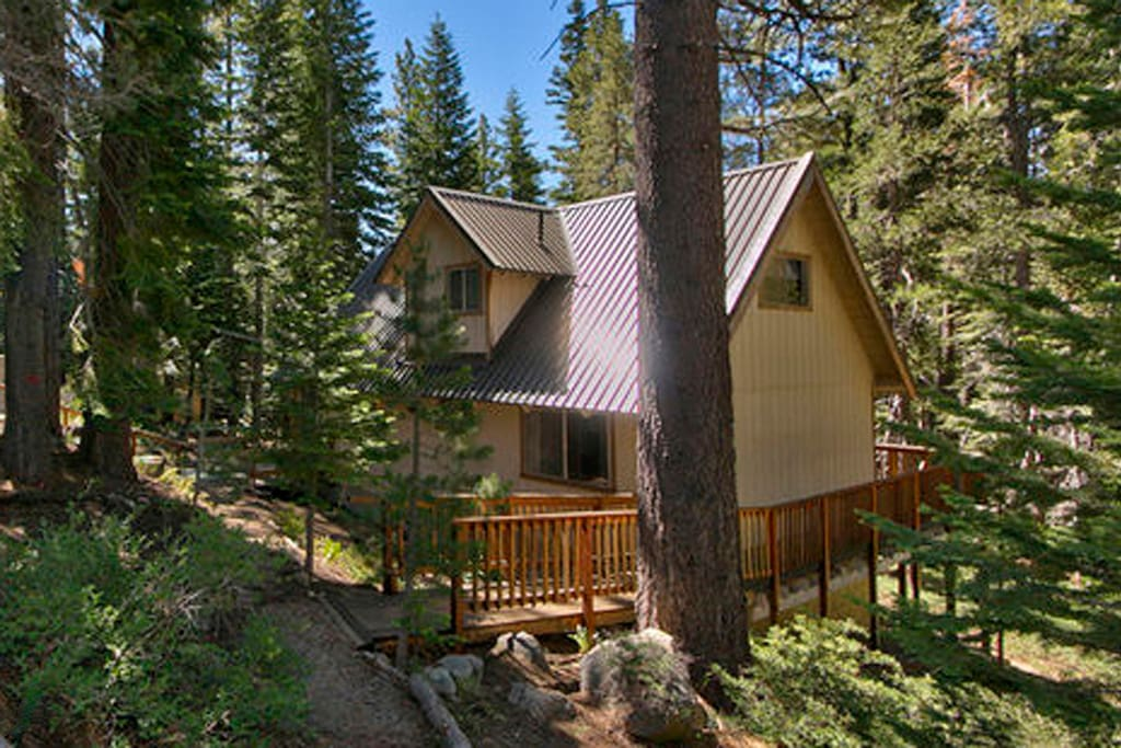 3b Loft Cabin Forest Creek Views Houses For Rent In