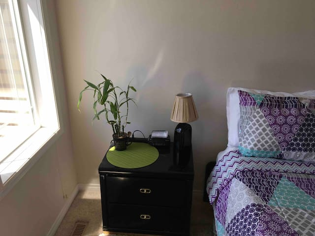 Lucky Bamboo adds more green to the room and Wifi Password is placed on the nightstand