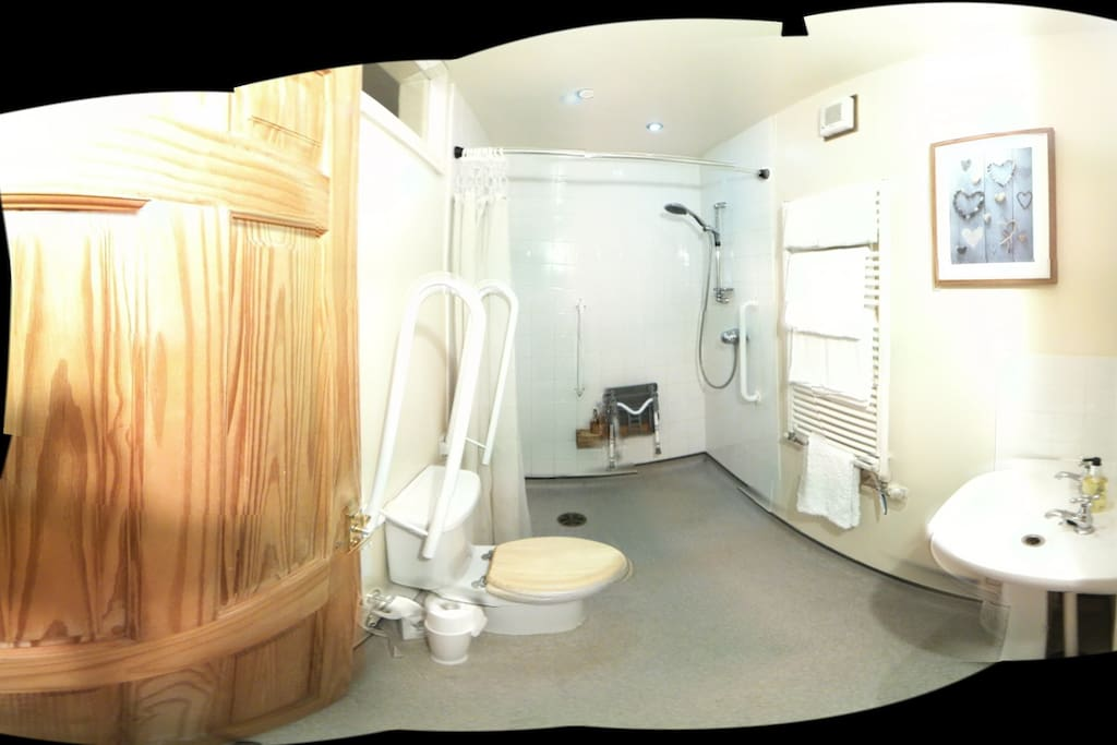 wheelchair accessible wet room, panoramic view