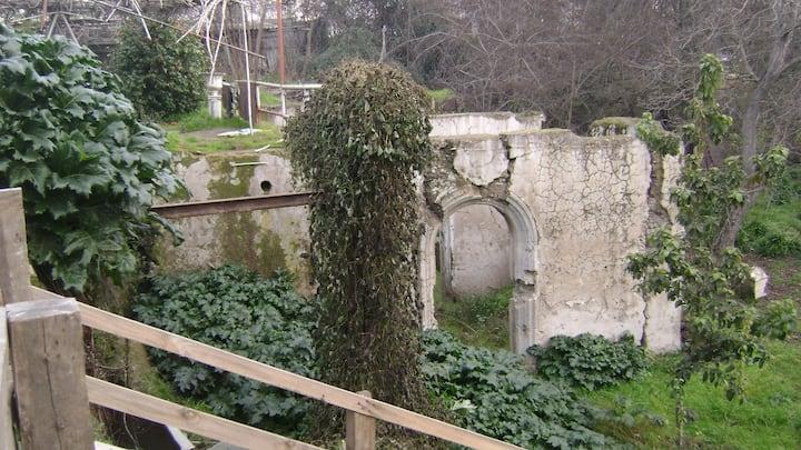 Veneciano Park