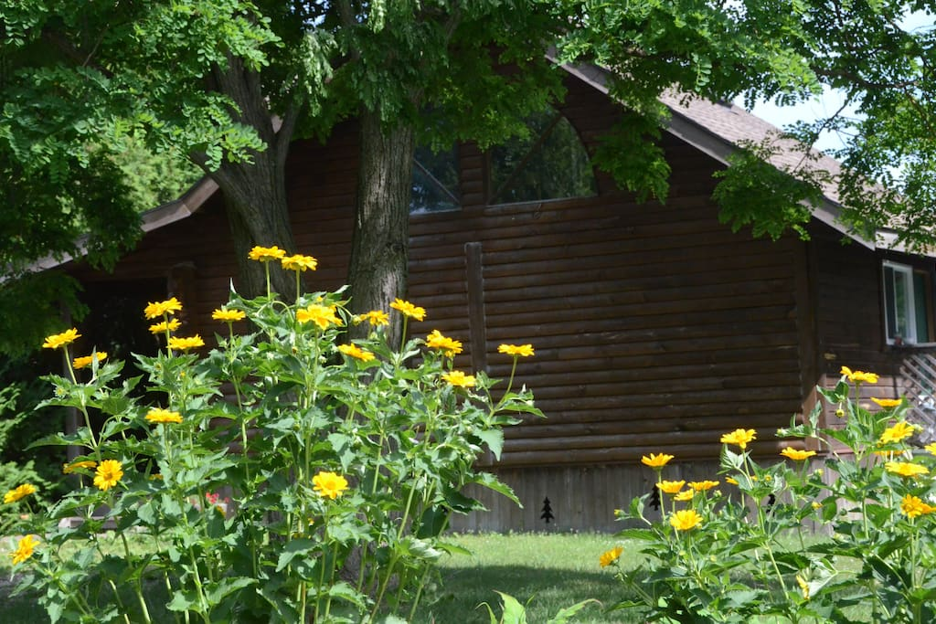 The guest house is a separate, private log cabin surrounded by extensive gardens
