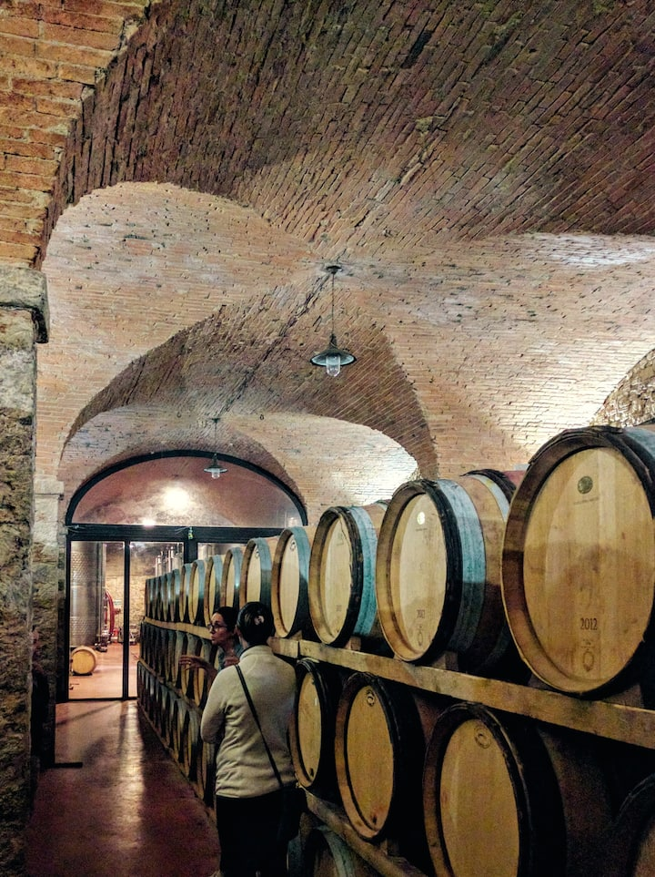 The oldest wine cellar in the region.