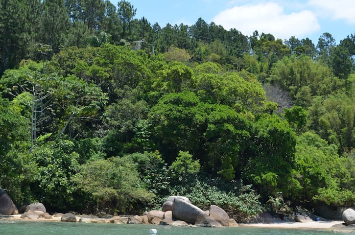 The rest of the property where you can walk around and find small beaches and fishing areas...