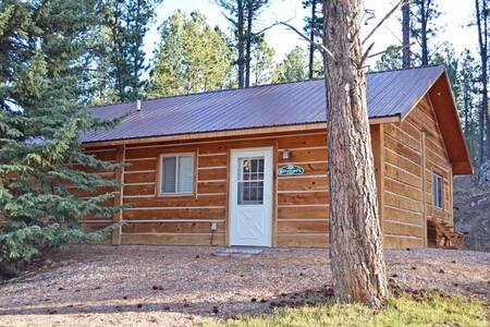 Stewarts-Cabin - Custer