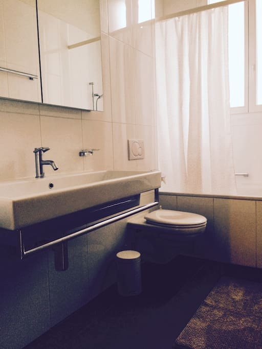 Bathroom equipped with shower / bathtub and heated towel rack.