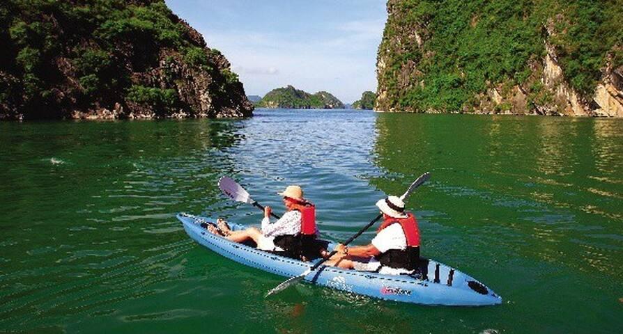 Private Cruises to visit Halong Bay - Hạ Long - Barca