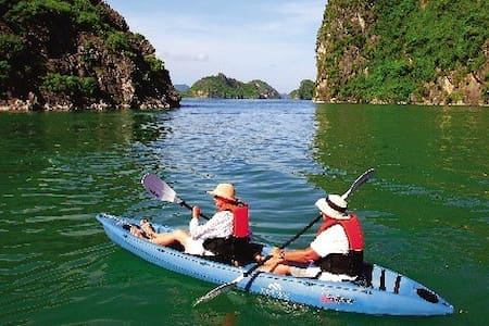 Private Cruises to visit Halong Bay - Ha Long - Boat