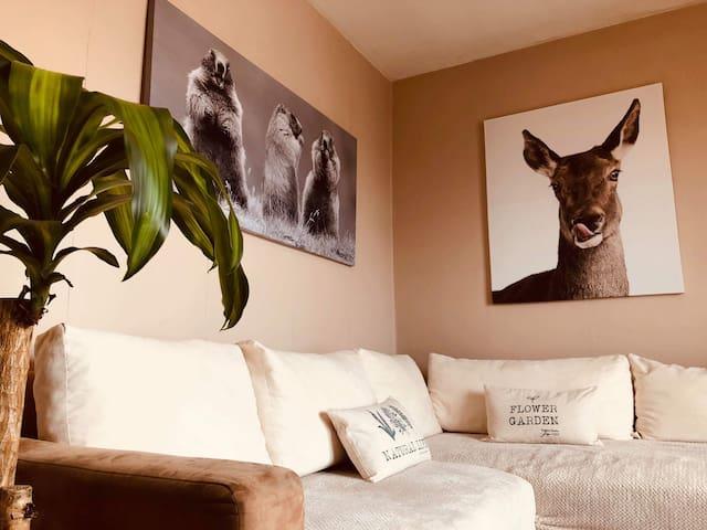Joli appartement entier au centre ville de Colmar