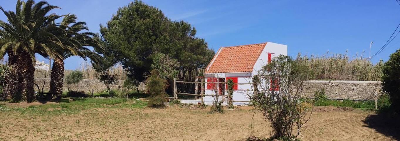 Cosy cottage in big rural ground - Peniche - Villa