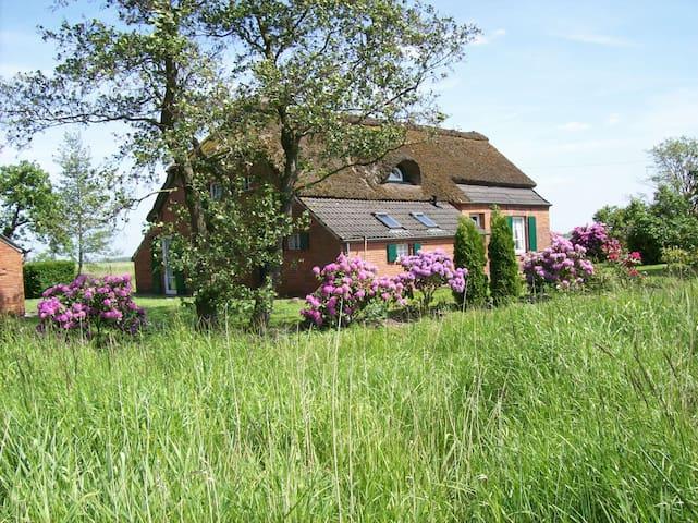 Kleines Haus am Großen Meer ( Ostfriesland )