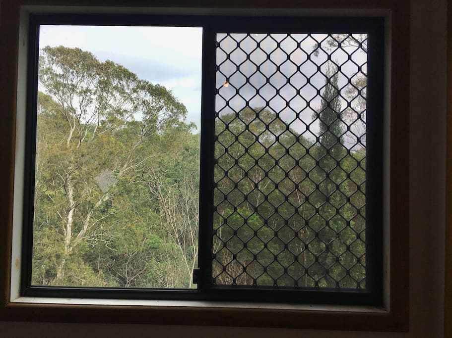View from your bedroom window