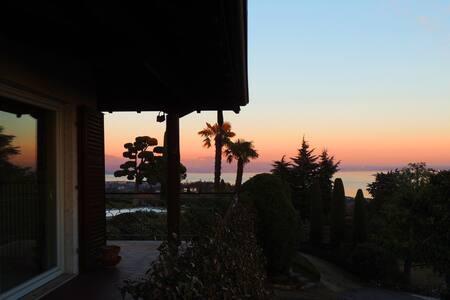 Villa vista lago immersa nel verde - Padenghe sul Garda