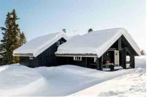 All-year-round cabin at Liatoppen