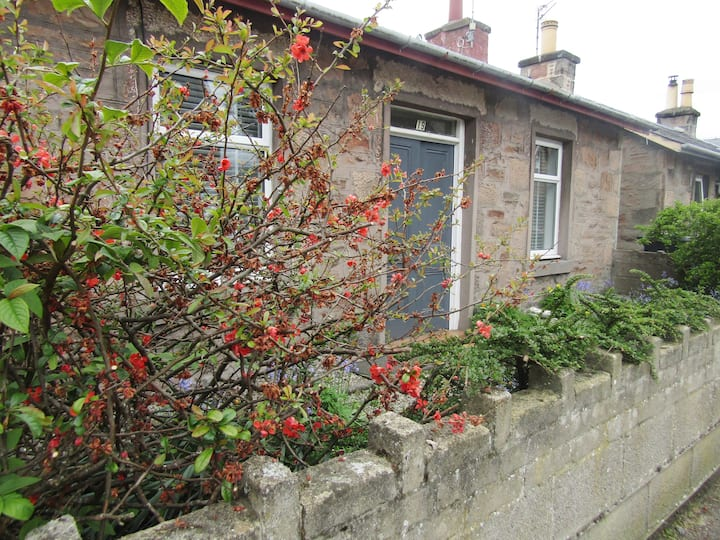Cottage with garden in city centre - Hill Street