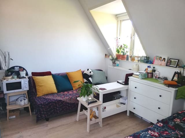 Cozy studio in the city centre of Leiden.