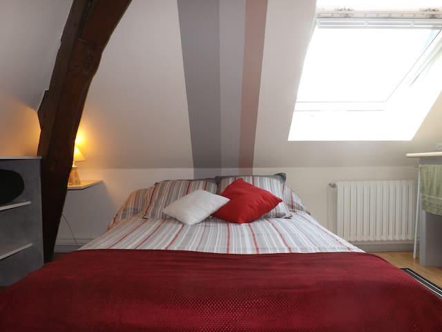 Sous les toits... dormez et roucoulez tranquille !