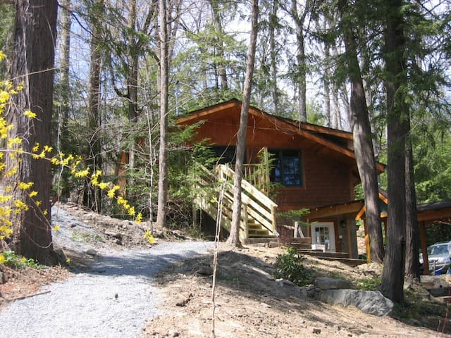 2-bdrm lake cabin in trees/ithaca - Ithaca - Cabane