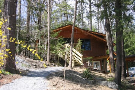 2-bdrm lake cabin in trees/ithaca - Ithaca