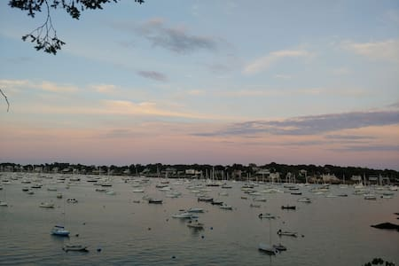 Summer by the Harbor