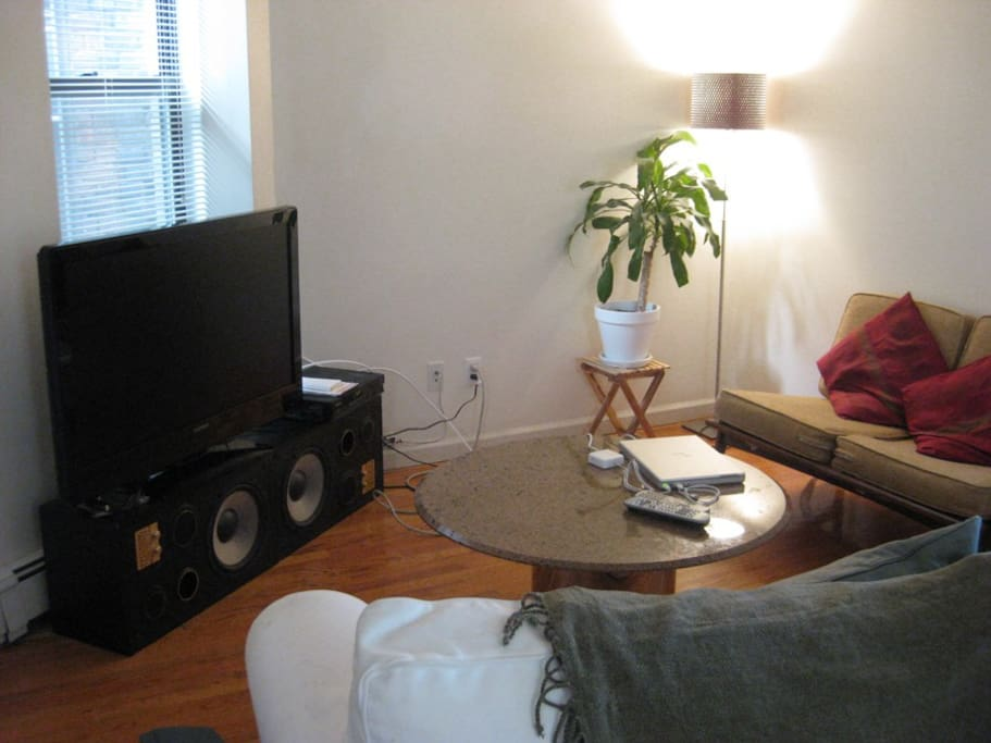 Couch, cable TV, 42inch LCD, DVD, high-speed internet and WiFi.