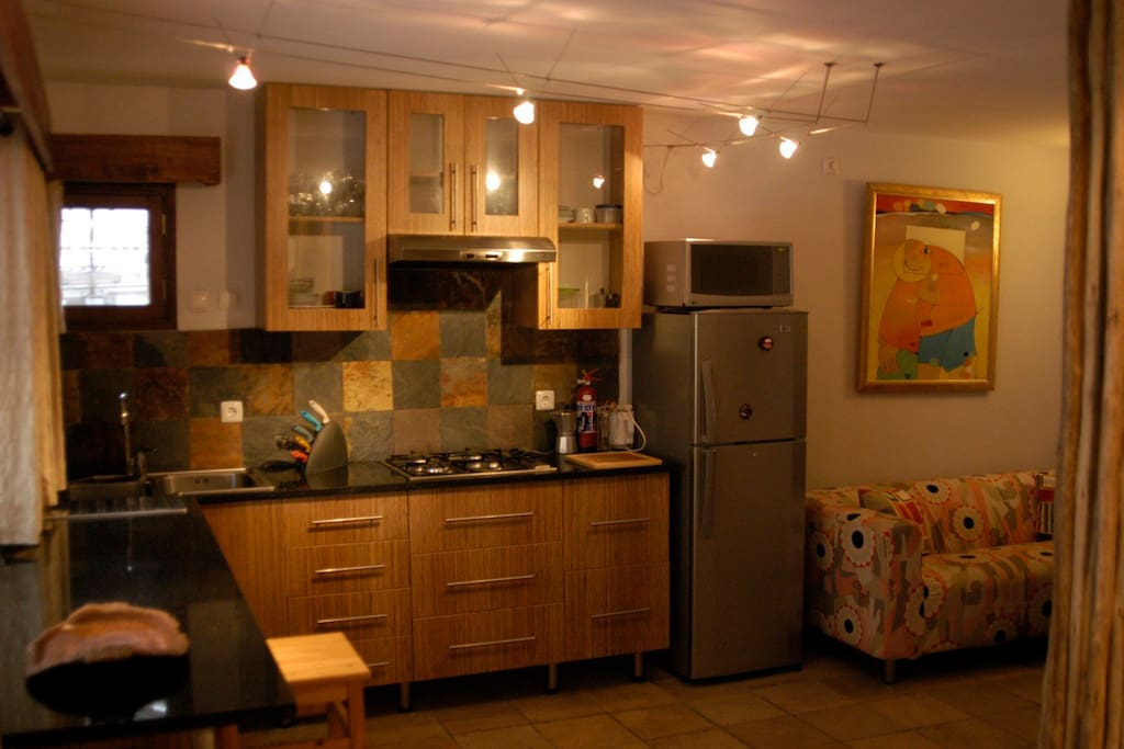 The Studio Apartment's kitchenette and living space.