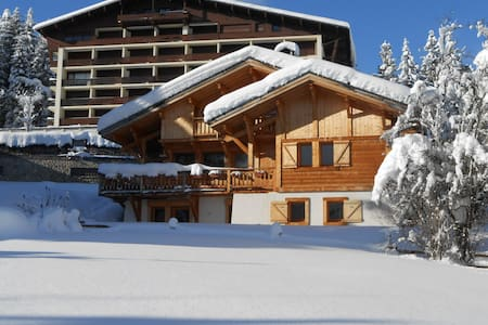 studio - foot of the ski slopes - Apartmen