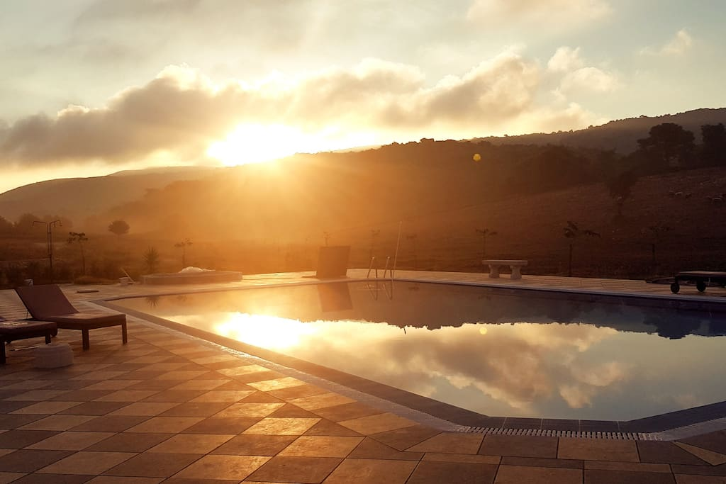 Our pool at dawn