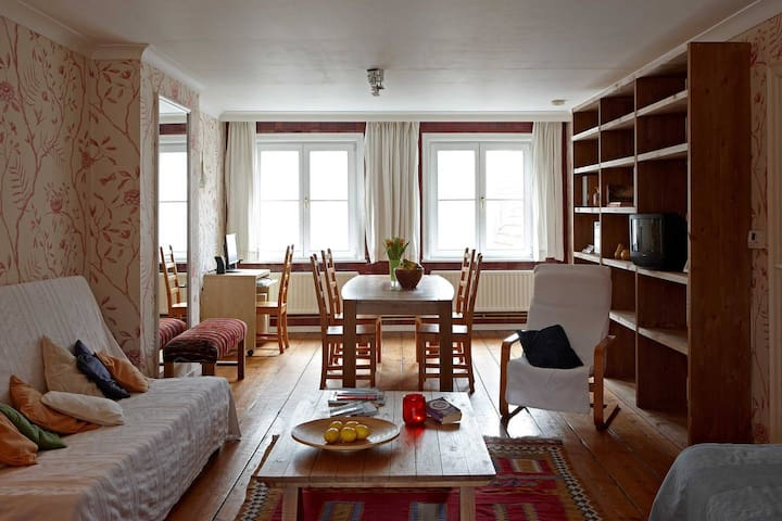 Spacious flat in the center of the historical city