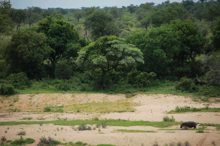 View to Crocodile river and Kruger Park